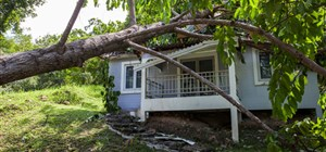 Tips For Choosing a Disaster Restoration Company